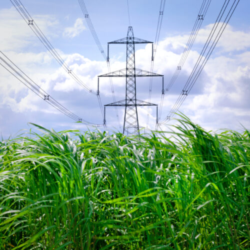 Electricity pylons supplying power for homes and businesses